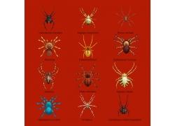 红色背景蜘蛛模型收集