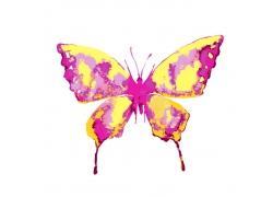 水彩漫画蝴蝶