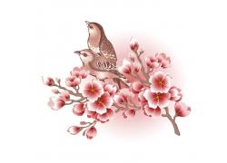 桃花上的小鸟