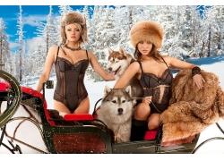 雪橇上的美女宠物摄影