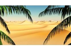 沙漠树叶背景