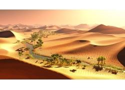 沙漠中的小河和树木