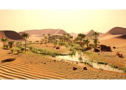 沙漠中的流水和树木
