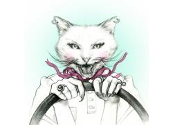 开车的猫咪插画图片