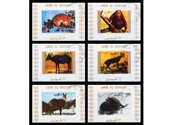 野生动物邮票图片