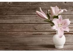 粉色百合花花瓶