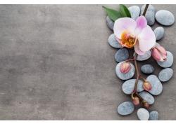 能量石与美丽兰花
