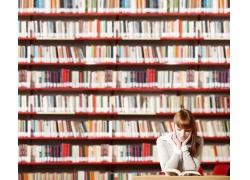 图书馆里的女孩图片