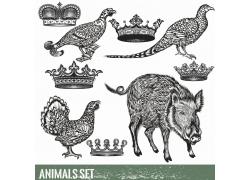 皇冠与动物插画图片