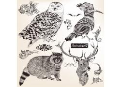 欧式花纹与鸟类动物插画图片