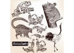 欧式花纹动物素描插画图片