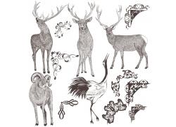 边角花纹与动物插画图片