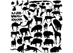 各种动物剪影图片