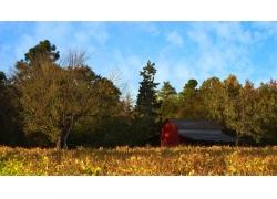 秋天田园木屋风景
