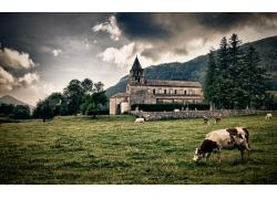 草地上的城堡