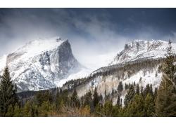 冬日高山树林雪景