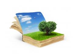 书本上的草地树木
