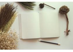 花卉植物与笔记本图片