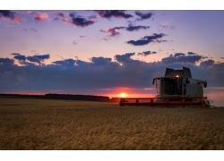 夕阳稻田里的收割机