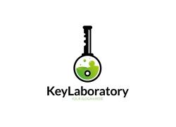 创意钥匙logo设计