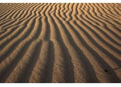 小路形沙漠
