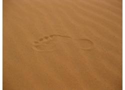 黄色沙漠中的脚印