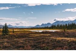 秋季草原与河流