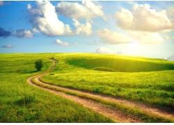 草原草地公路风景