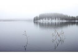 树林湖泊雪景