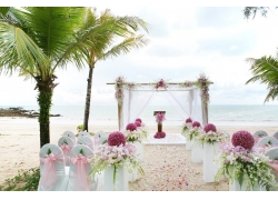 草坪婚礼布置