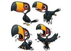 卡通巨嘴鸟插画图片