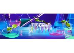 生物科学实验