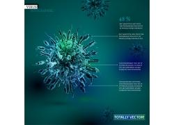 立体细胞结构