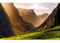 高山草地风景