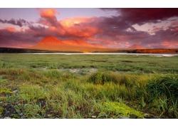 高原草地风景