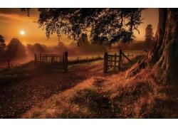 夕阳下的乡村风光