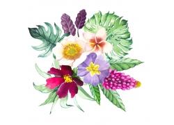 水彩热带植物花朵图案