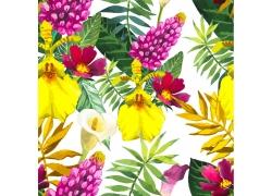 鲜艳植物花朵图案