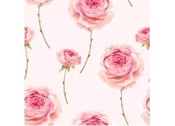 盛开的花朵图案