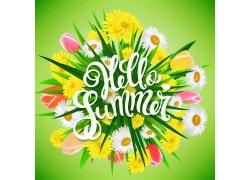 你好夏天鲜花背景