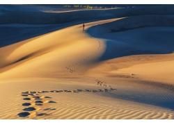 沙漠上的脚印