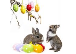 树枝上的彩蛋与兔子
