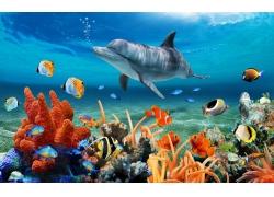 绚丽珊瑚鲨鱼背景墙