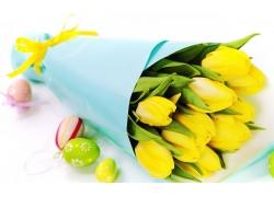 黄色郁金香彩蛋图片