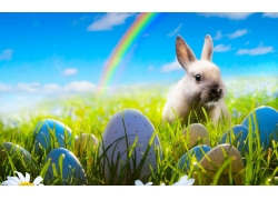 彩虹兔子彩蛋图片