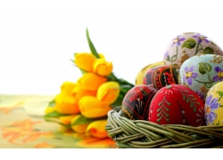 郁金香和彩蛋图片