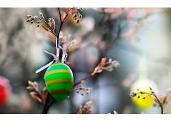 树枝上的彩蛋图片