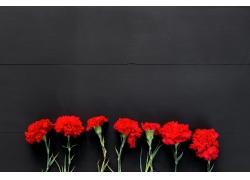红色的康乃馨