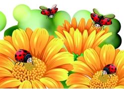 卡通瓢虫鲜花