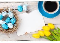 青色彩蛋和黄色郁金香